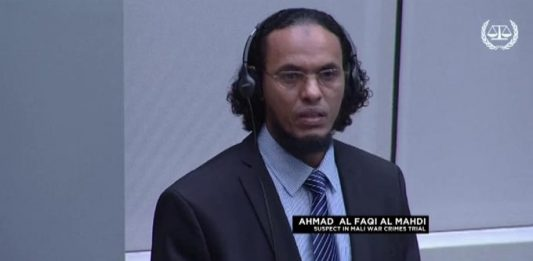 Muslim extremist pleads guilty in The Hague