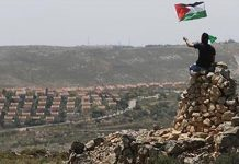 The politics of an accident in the Occupied Palestinian Territories