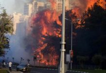 Israel: Tens of thousands flee Haifa wildfires