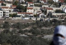 Middle East lauds UN vote on ending Israeli settlements
