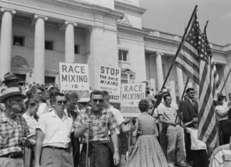 Uncovering the roots of racist ideas in America