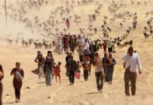Dozens of Yazidi 'slaves' rescued by Iraqi troops