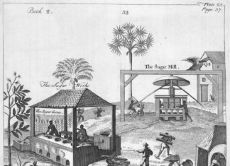 The hidden stories of medical experimentation on Caribbean slave plantations
