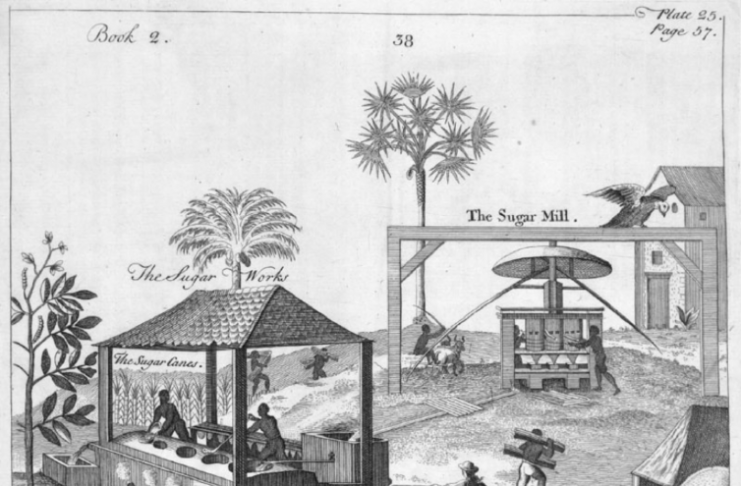 The hidden stories of medical experimentation on Caribbean slave plantations