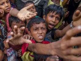 UN-listed Terror Group Found Collecting Donations for Rohingya in Pakistan