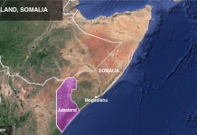 US Airstrike Kills 13 al-Shabab Militants in Somalia