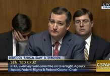 Ted Cruz Hearing Features Crackpot Anti-Muslim Witness