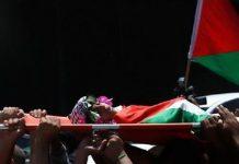 US funding 'Israeli state terrorism' in military deal