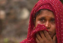 'Sold like cows and goats': India's slave brides