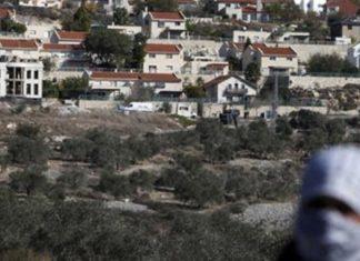 Middle East lauds UN vote on ending Israeli settlements