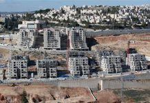 Palestinians ask Israeli court to reject land grab law
