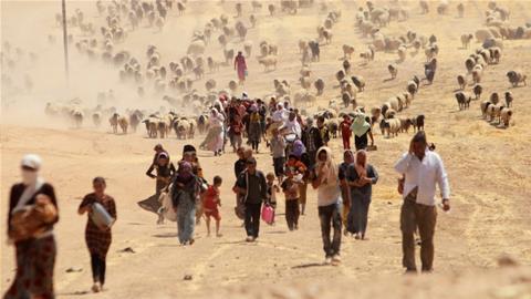 Dozens of Yazidi 'slaves' rescued by Iraqi troops